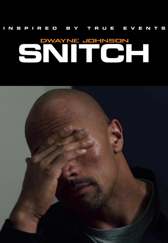 Snitch 2013 Poster